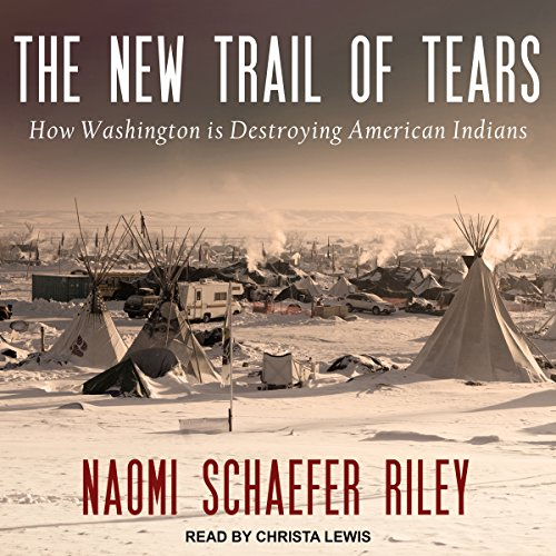 The New Trail of Tears audiobook cover art
