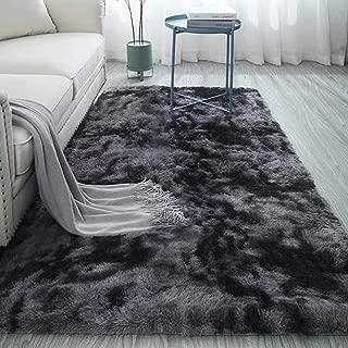 Best fluffy carpet rugs Reviews