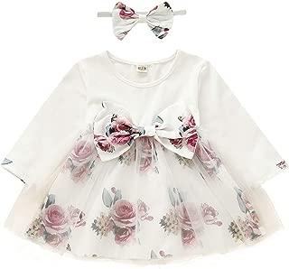 Camidy Baby Girl Dress Tutu Mesh Floral Dress Lovely Birthday Party Dress + Headband