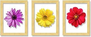 Art Street Set of 3 Wooden Wall Art Flower Designed Clear Acrylic Glass Framed Art Print (Size - 11.2x31 Inches)