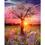 Oumaiga DIY Adult Paint by Number Kits for Beginners on Canvas Rolled 16' by 20' Canvas DIY Oil Painting for Students, Adults Beginner with Brushes and Acrylic Pigment (Beauty Tree Sunset, 16in20in)