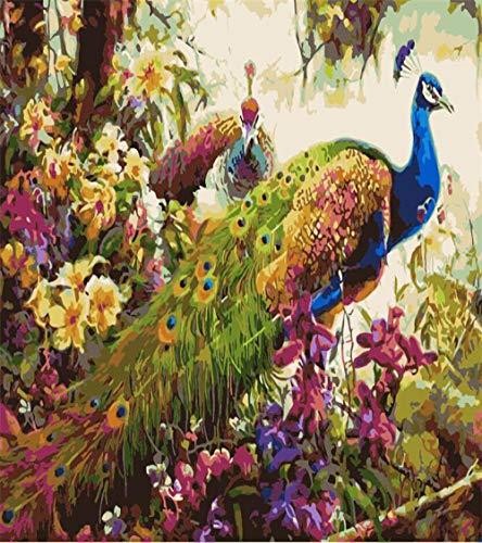KSKD Peinture par Nombre Kits Avec Brosses et Peintures pour Adultes Enfants Seniors Junior Débutant Acryliques sur Canevas Paon de fleurs- 16x20 pouces sans cadre