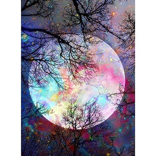 AIRDEA 5D Diamond Painting by Number Kit, Bright Moon Full Drill Embroidery Cross Stitch Picture Supplies Arts Craft Wall Sticker Decor 11.8x15.8 inch