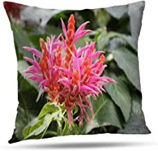 LANURA Pretty Throw Pillow Cover, Pretty Pink and Orange Blossoms Queen Sea Holly Plant Exotic 18x18 Inch Decorative Throw...