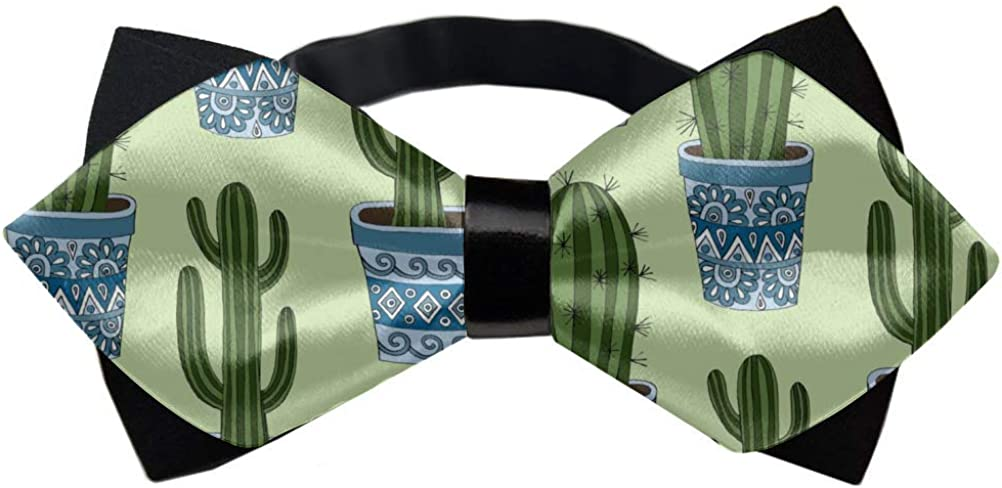 Bowtie, Bow Tie - Paisley Tie - Wedding Party Gift, Holiday Party Bow Tie