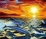 HUILIYI Pintura Digital DIY para Adultos y Principiantes.Nadar con Delfines Kit de Pintura al óleo Mural Moderno Conjunto decoración del hogar Pintura acrílica-40 x 50 cm (sin Marco)