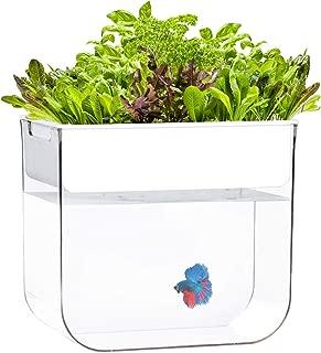 Joyfay Aquaponic Fish Tank- Betta Fish Tank, 3.2 Gallon, Hydroponic Cleaning Tank, Fish Feeds The Plants and The Plants Clean The Tank