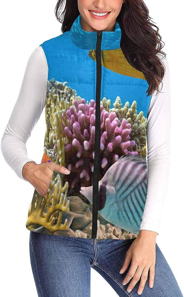 InterestPrint Women's Lightweight Vest Softshell Sleeveless Jacket Windproof Ocean Seaurtle