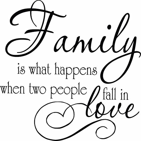 Family is What Happens When Two People Fall in Love Wall Vinyl Decal Nursery Quote Decor Sticker #1334 Matte Black