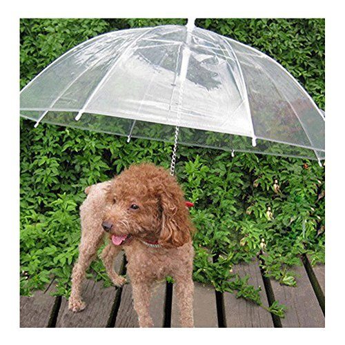 Sotoboo Pet ombrello (Dog/CAT ombrello) cane guinzaglio – trasparente impermeabile Pet umbrella-umbrella per asciugare Walks in the Rain Snow