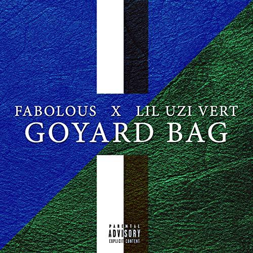 Goyard Bag [Explicit]