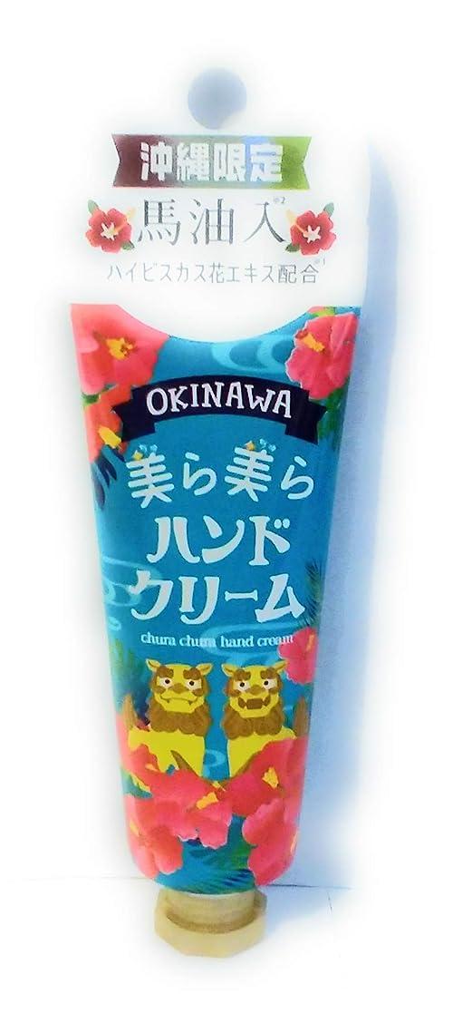 三番周術期アシスタントOKINAWA美ら美らハンドクリーム(ハイビスカス)
