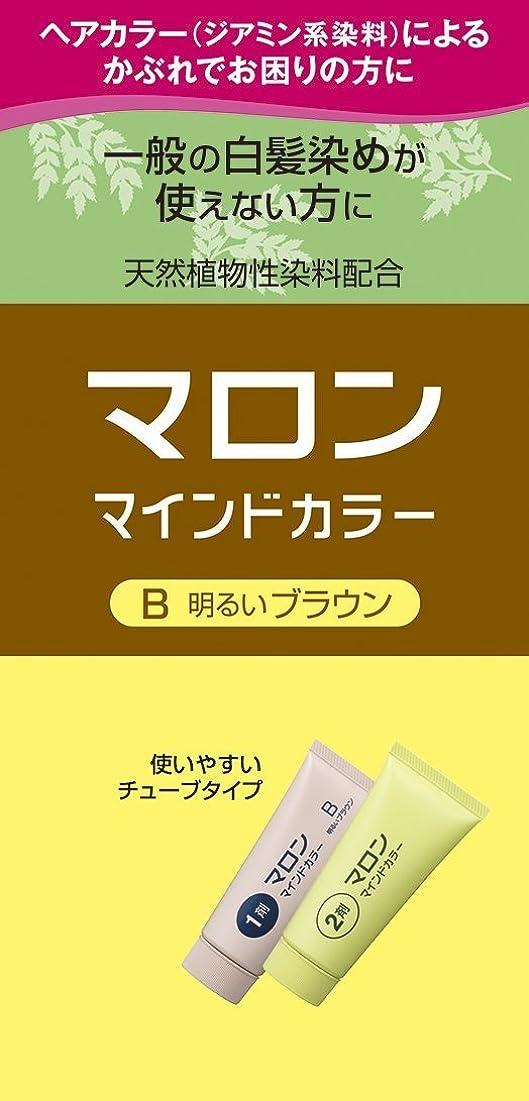 サイトライン処理研磨剤マロン マインドカラー B 明るいブラウン 140g ×6個