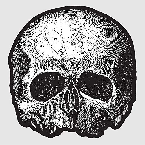 "Black Pearl 10"" (Die Cut Skull Pic Disc) [Disco de Vinil]"