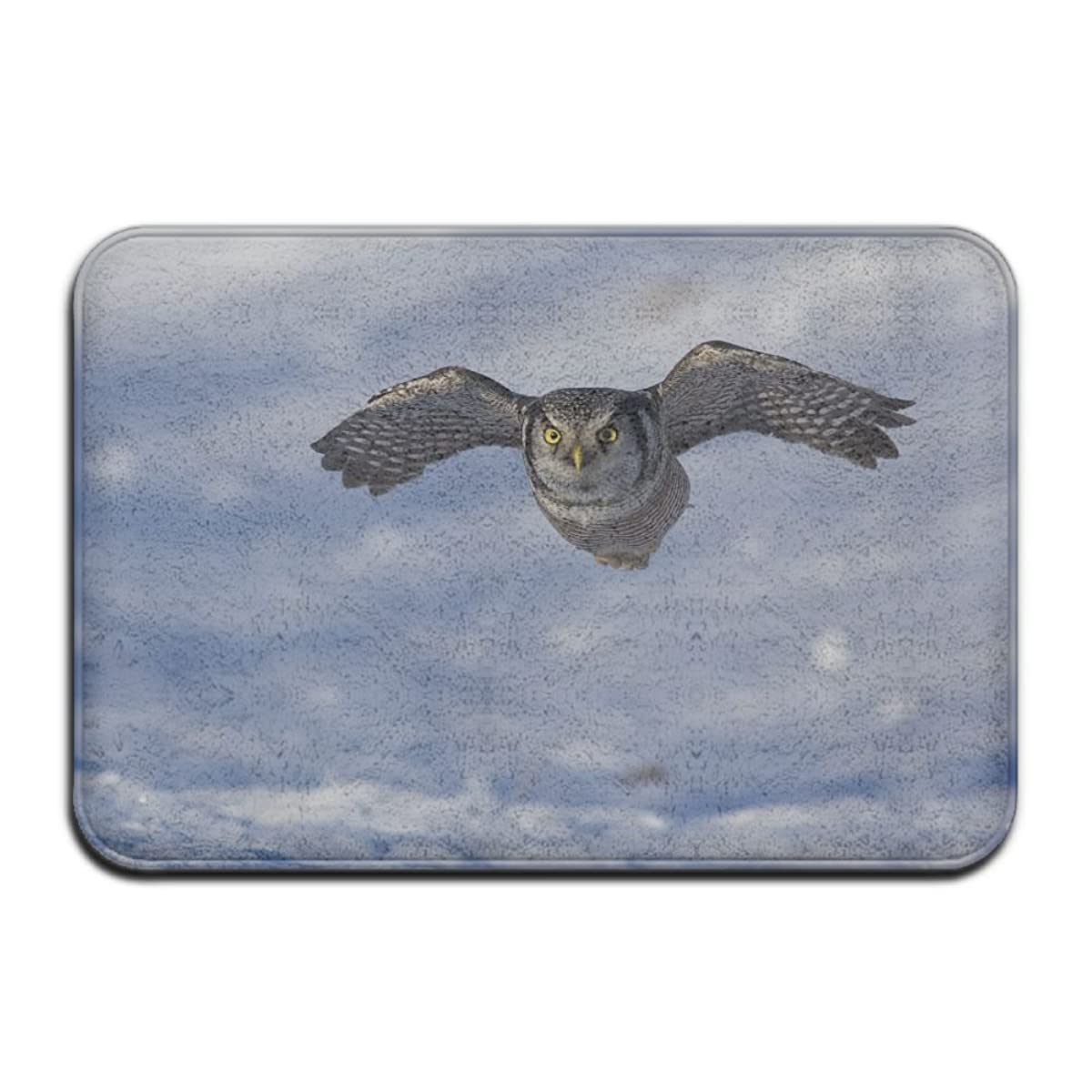 FTRGRAFE Snown Fat Hawk Owls Home Door Mat Super Absorbent Non Slip Front Floor Mat,Soft Coral Memory Foam Carpet Bathroom Rubber Entrance Rugs For Indoor Outdoor
