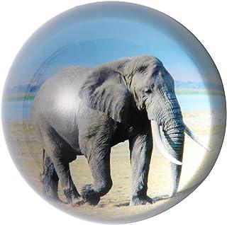 جراب هانور كريستال الفيل الورق الزجاجي نصف الكرة الأرضية من الورق لتزيين إبداعي.