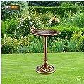 DGI Garden Bird Bath - Antique Brass Effect Large Birth Bath Bowl - All Weather Resistant Garden Water Feature from DGI