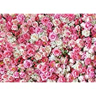 Dudaacvt 7x5ft Happy Birthday Backdrop Wedding Backdrops Pink Red Rose Flowers Photography Backdrop Studio Photographers Background Dessert Baby Shower Table Backdrop D040