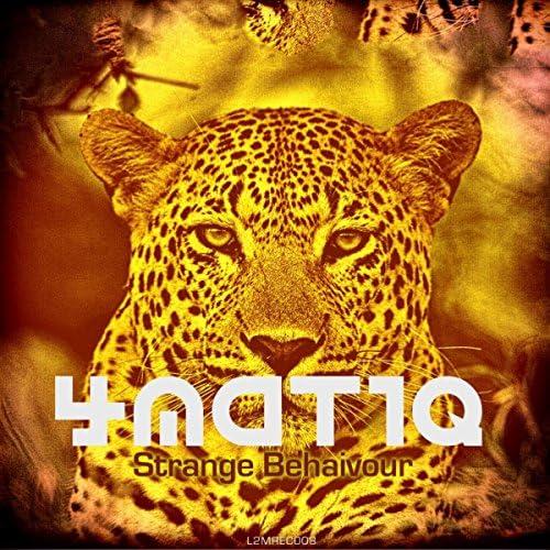 4matiq