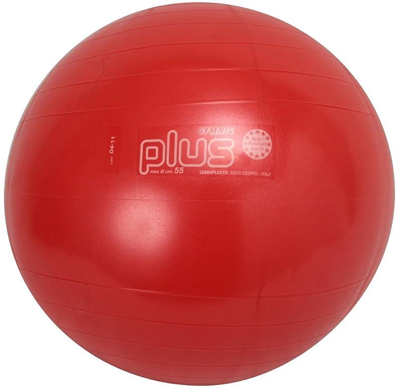 軍認知有利ダンノ(DANNO) バランスボール ギムニクカラーボールPLUS