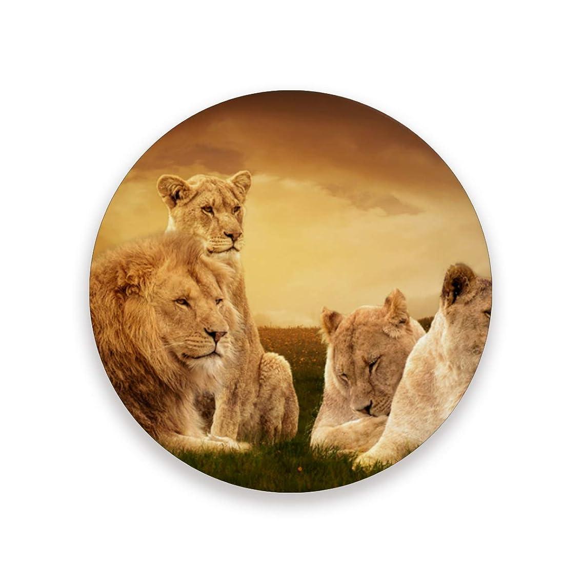 夜明けジャベスウィルソン大コースター おしゃれ 茶パッド アフリカライオン 滑り止め エコ 速乾 抗菌 消臭 1枚セット