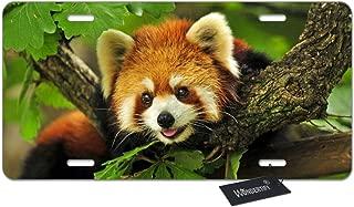 WONDERTIFY License Plate Little Cute Red Panda Decorative Car Front License Plate,Vanity Tag,Metal Car Plate,Aluminum Novelty License Plate for Men/Women/Boy/Girls Car,6 X 12 Inch (4 Holes)