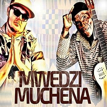 Mwedzi Muchena