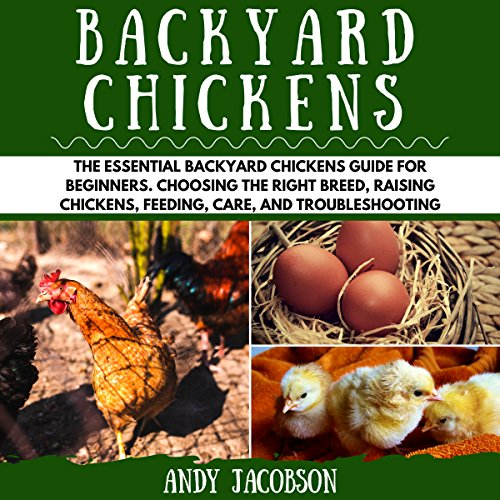 Backyard Chickens: The Essential Backyard Chickens Guide for Beginners audiobook cover art