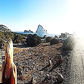The Road to Vedra