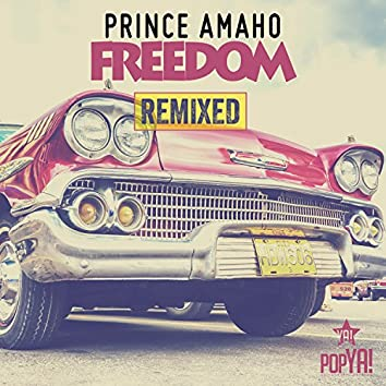 Freedom (Remix Edition)