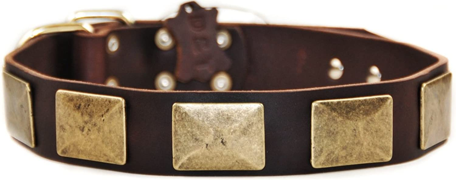 Dean & Tyler Brass Plate Dog Collar with VintageStyle Plates and Brass Buckle, 18 by 11 2Inch, Brown