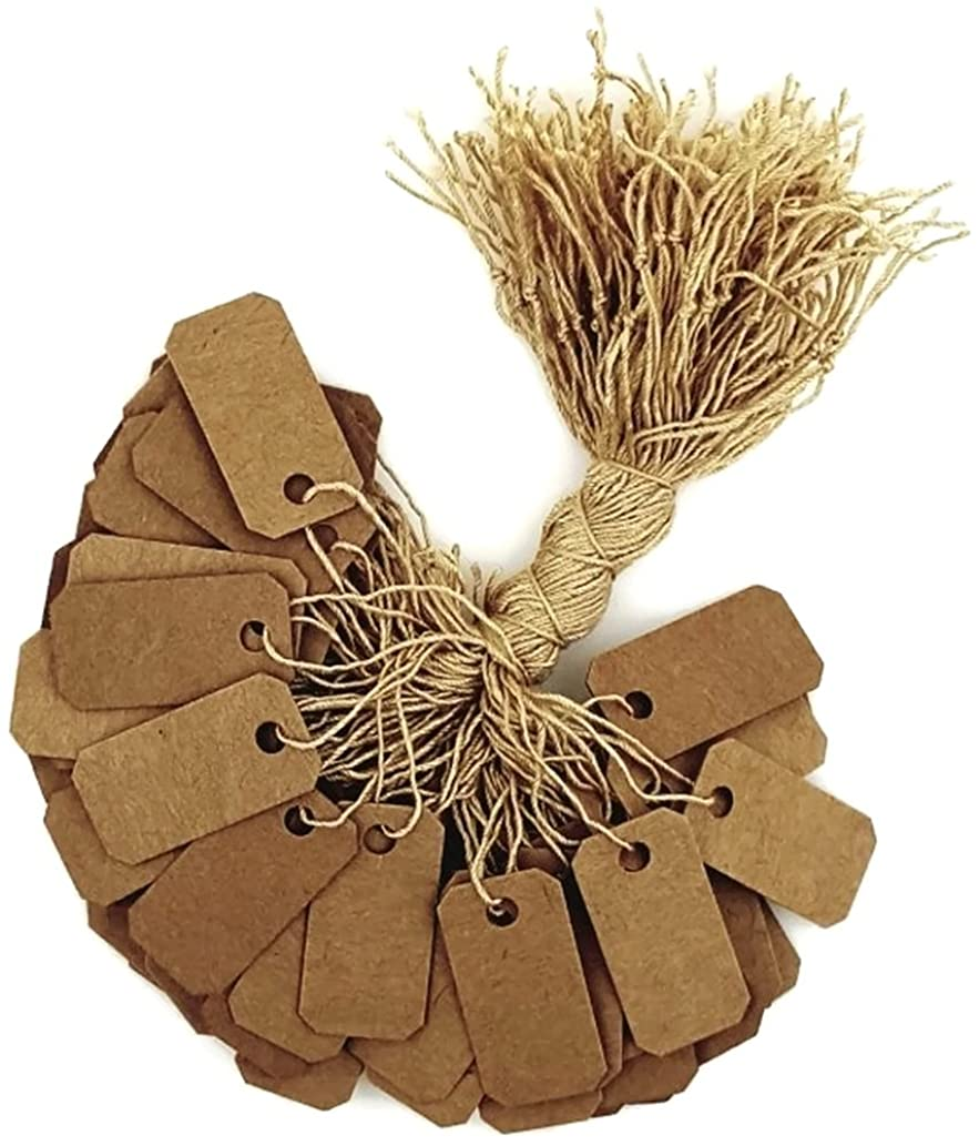 100 pcs Kraft Paper Tags, Jewelry Price Tags with String (1