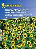 Husarenknöpfchen, 'Gelber Vogel'
