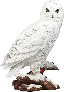 Ebros Mystical White Snow Owl Bird Statue 12.25