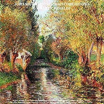 Walter Rinaldi: Piano Concertos & String Orchestra Works - Bach: Jesu, Joy of Man's Desiring - Handel: Messiah, Hallelujah Corus - Debussy: Claire De Lune & Children's Corner - Ravel: Pavane - Mozart: Ave Verum