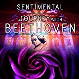 Sentimental Journey with Beethoven Songs - Essential Sad Violin Music, Ludwig Van Beethoven Classical Melodies & Songs, Inspirational Music