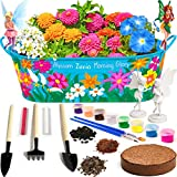 Little Planters Paint & Plant Fairy Garden with Real Flowers and Magical Fairies - Paint, Plant and Grow Morning Glory, Zinnia and Alyssum Flowers - Craft Kit for Kids All Ages Both Girls and Boys