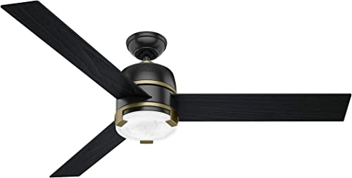 """discount Hunter Bureau Indoor Ceiling Fan with LED popular Light and Remote discount Control, 60"""", Matte Black outlet sale"""