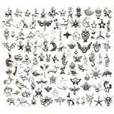 Youdiyla Animal Charms Collection, Bulk 100 Mini Small Silver Charms Metal Pendant Craft Supplies Findings for Necklace and Bracelet Jewelry Making (HM289)