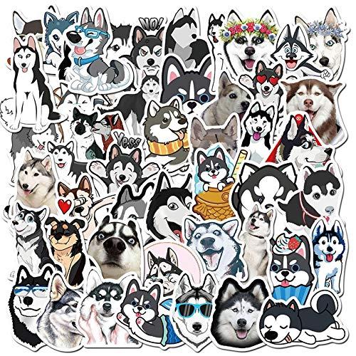 Linda mascota husky maleta portátil casco taza monopatín impermeable graffiti pegatinas 50 piezas