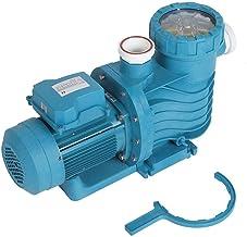 CHICIRIS Filtre de Piscine, avec équipement de Piscine à poignée en Demi-Cercle, Interface 63 mm 27,5 m³h Haute efficacité...