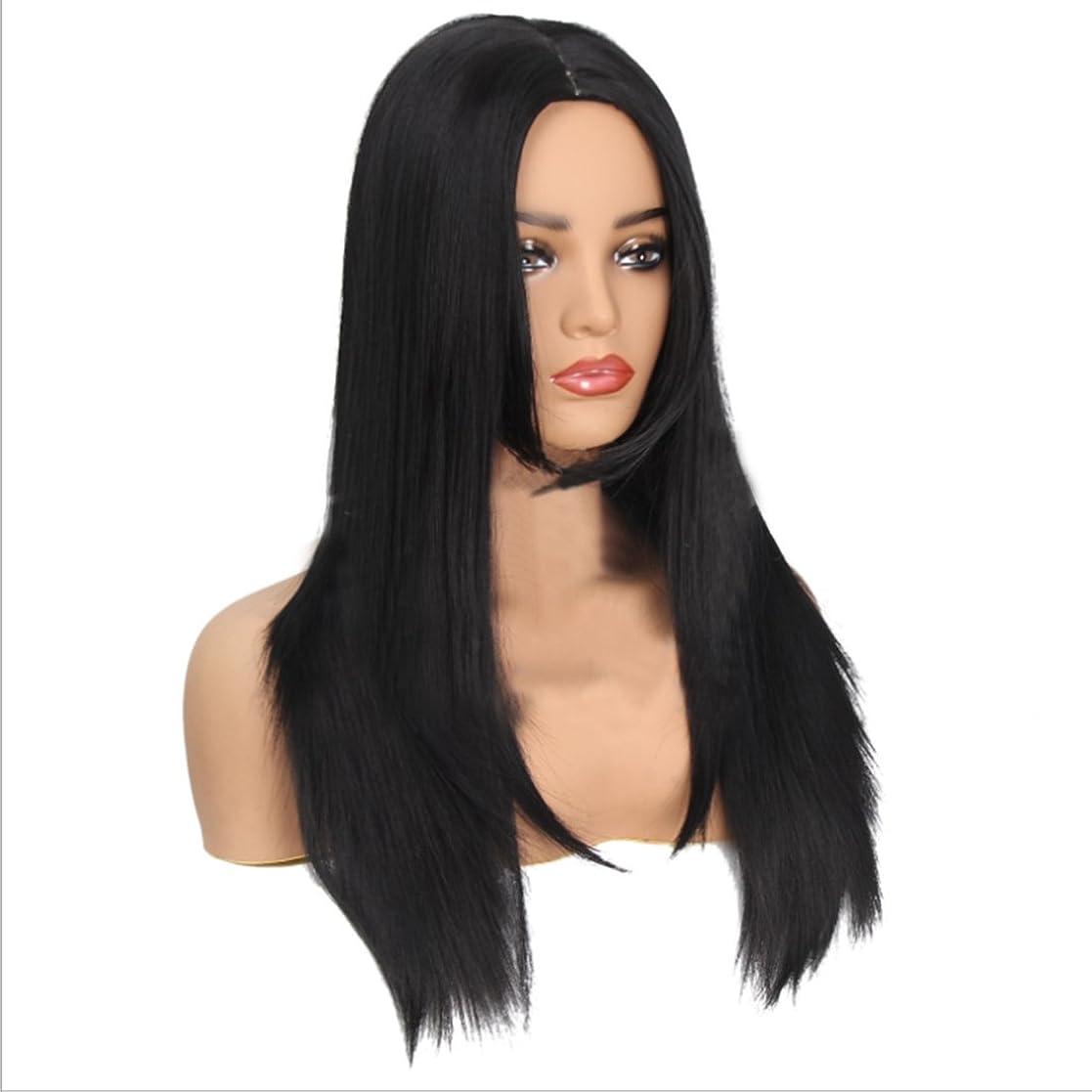 閲覧する信号サバントJIANFU 女性 化学繊維 かつら 長い 耐熱 ウィッグ 人格の女性 フルヘア 自然な色 かつら (Color : ブラック)