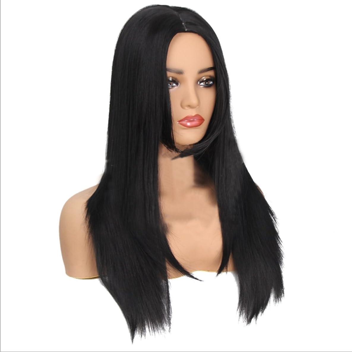 慣習保証する旅Koloeplf 女性 化学繊維 かつら 長い 耐熱 ウィッグ 人格の女性 フルヘア 自然な色 かつら (Color : ブラック)
