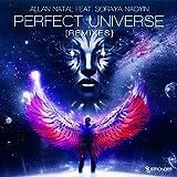 Perfect Universe (Remixes)