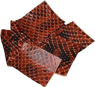 10.5*4.2*1.2 lunghezza xw4.2/xh1.2 Homestead medie lettiera paletta in acciaio INOX N-5923 C