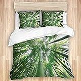 Jojun Funda nórdica, árboles de bambú Altos de la Selva Tropical en Estilo exótico de la arboleda Imagen del Tema de la Naturaleza, Juego de Ropa de Cama con 1 Funda y 2 Fundas de Almohada