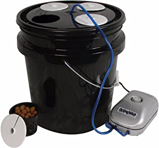 HTGSupply 5-Gallon Bubble Boy 4 Banger Deep Water Culture (DWC) Hydroponic Bucket System