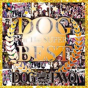 DOG inTheSUPER BEST