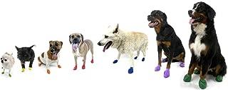 Pawz Dog Boots - Large - Black,12 pack