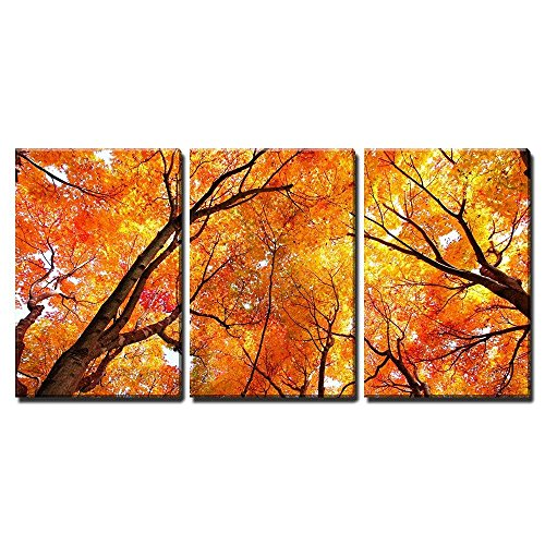 "wall26 - 3 Piece Canvas Wall Art - Maple Tree in Autumn - Modern Home Decor Stretched and Framed Ready to Hang - 16""x24""x3 Panels"